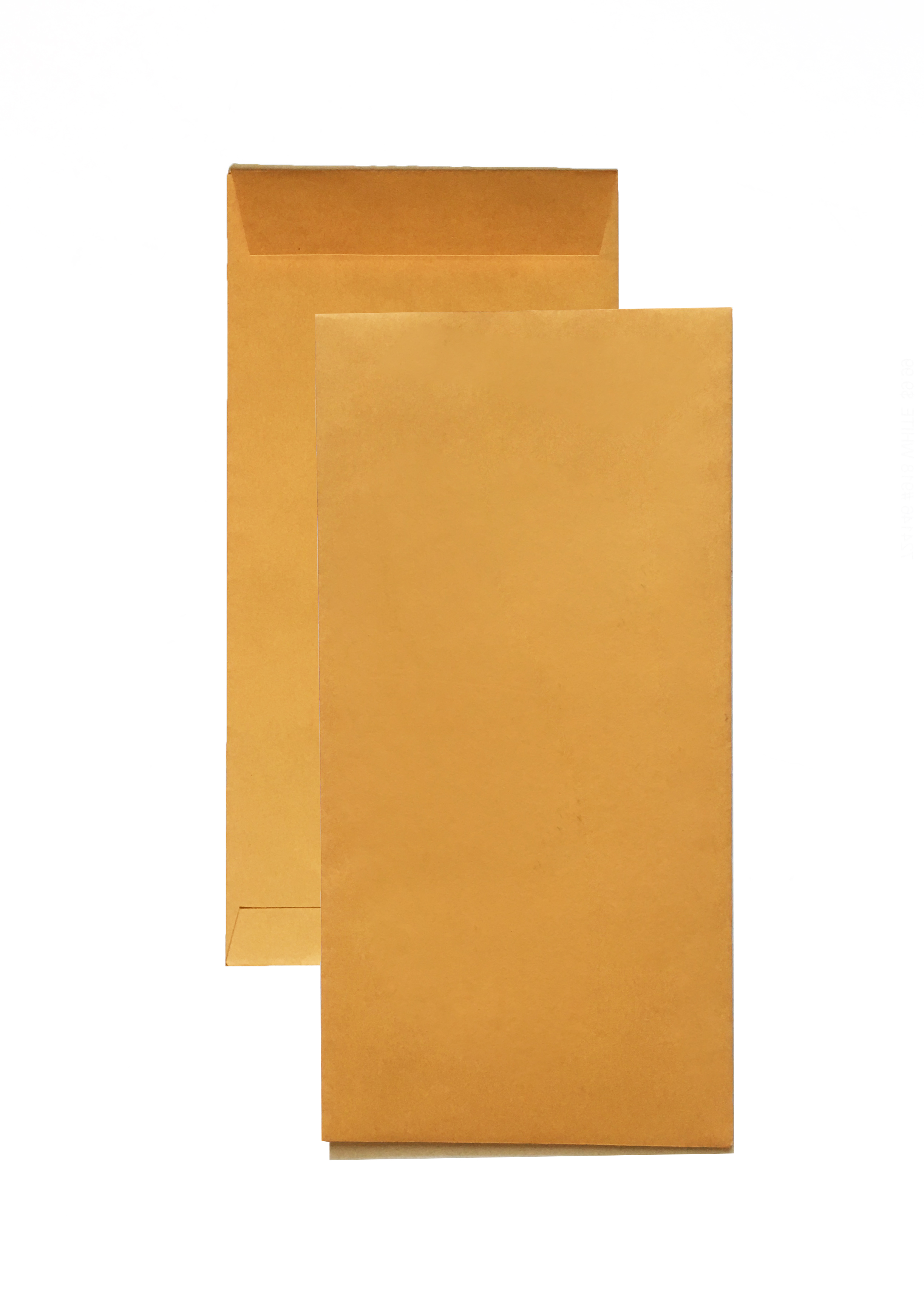 Generic License Plate Envelopes