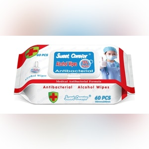 Hand Wipes - Sanitizing (CT/24)
