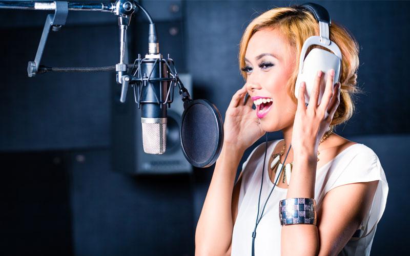 Vox Pro Condenser Microphone - Vox Pro Condenser Microphone